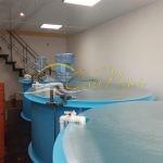 Емкости для разведения рыбы заказать